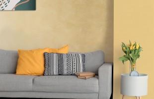 Декоративная Краска CeboLife ACTIVE с ионами серебра